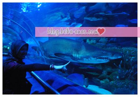 aquaria-klcc-jerung-besar
